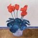 'Cyclamen celebration' by Louise Turnbull